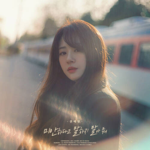 Sin Ye Young - Don't Apologize iTunes Plus M4A